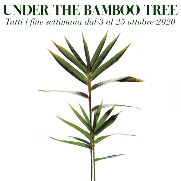 evento under the bamboo tree 2020 al labirinto della masone
